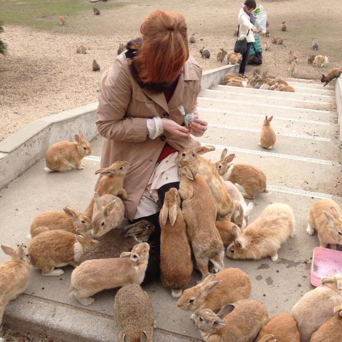 Кроличий остров в Японии — Okunoshima (24 фото)