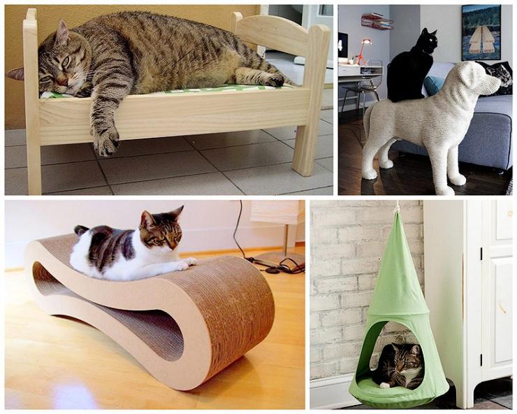 несколько самых любопытных фактов о взаимоотношениях человека и кошки