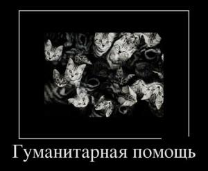 demotivatory_09