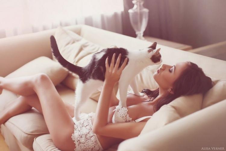 Коты и девушки