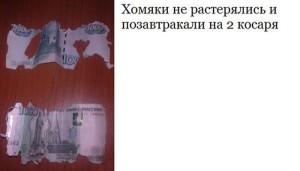 podborka_61
