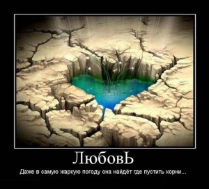 prikolnie_demotivators_zapilili.ru_35
