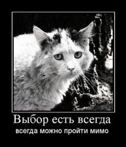 prikolnie_demotivators_zapilili.ru_45