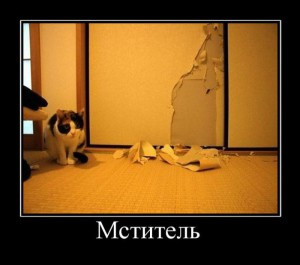 prikolnie_demotivators_zapilili.ru_47
