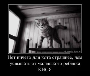 prikolnie_demotivators_zapilili.ru_55