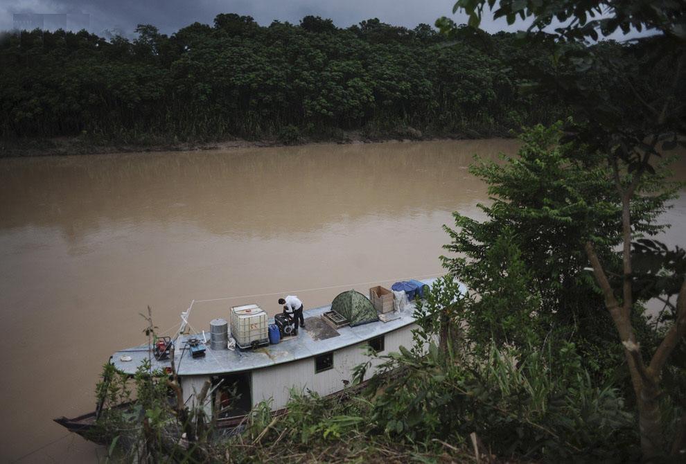 Выживание в Амазонке