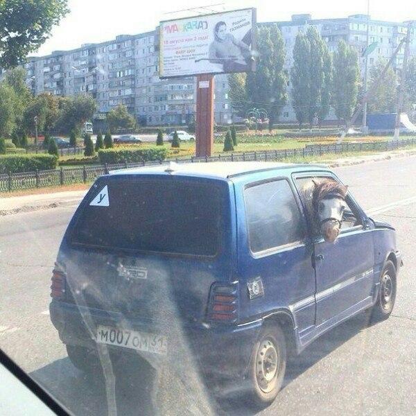 prikolnie_kartinki_zapilili-ru_59