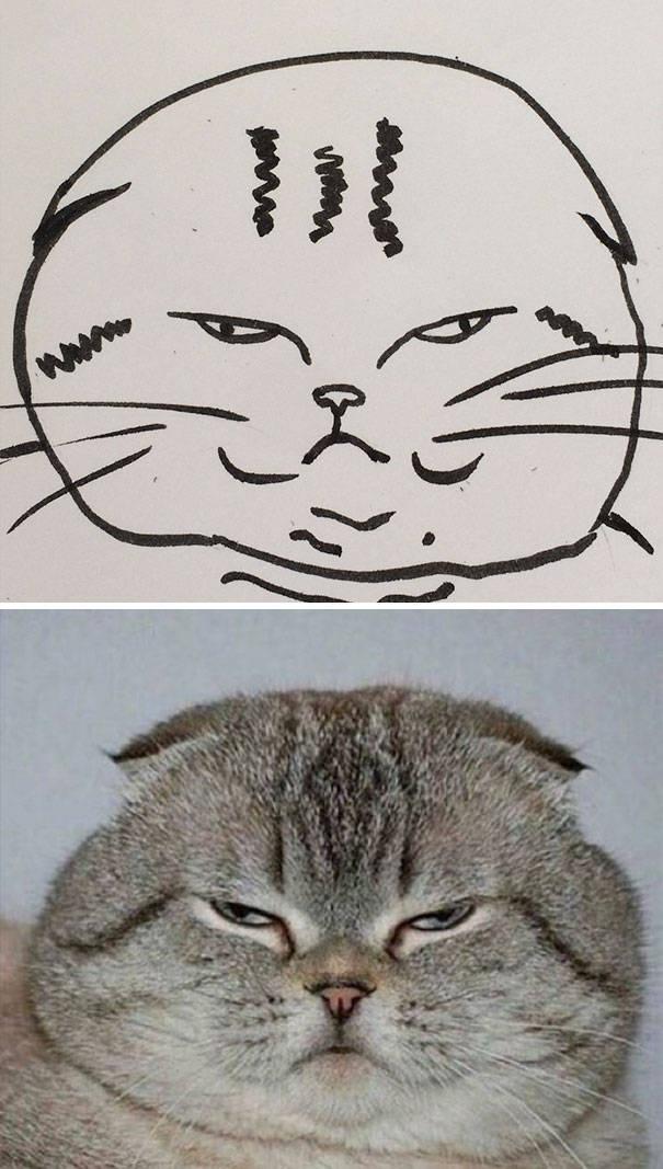 cat_drawings_03