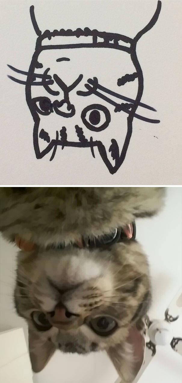 cat_drawings_10