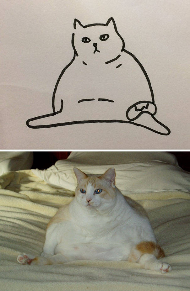 cat_drawings_18