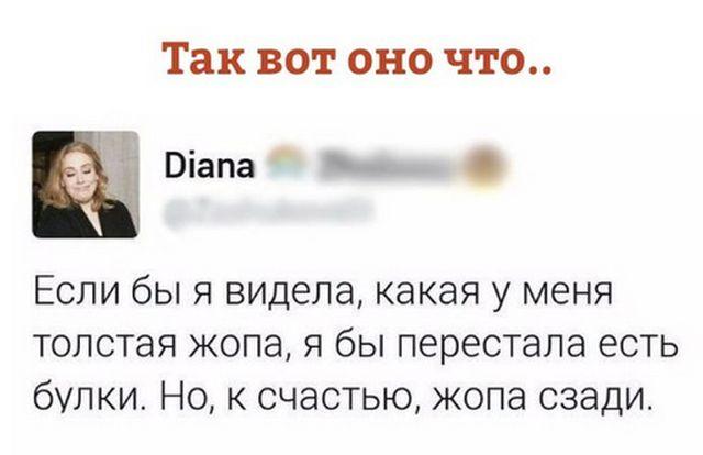 smeshnie_foto_zapilili.ru_47