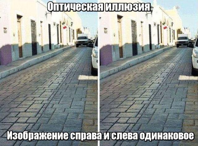 smeshnie_foto_zapilili.ru_58