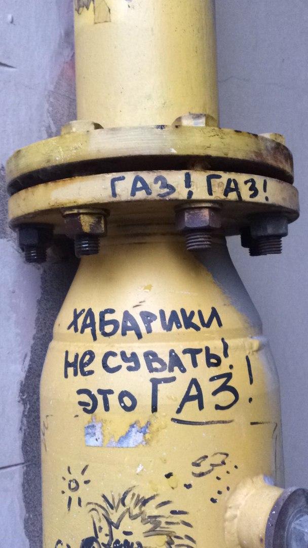 prikolnie_kartinki_na_zapilili.ru_36