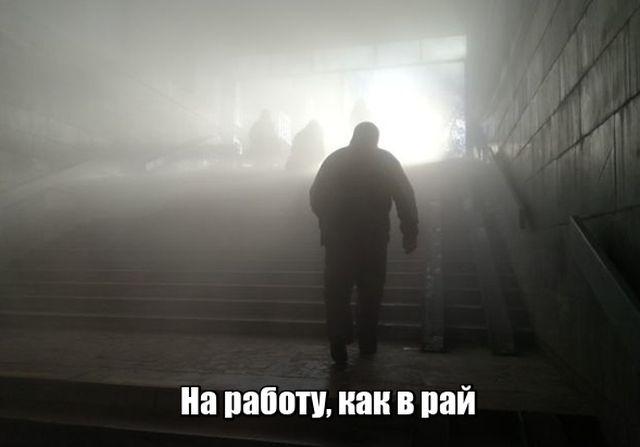 prikolnie_kartinki_na_zapilili.ru_97