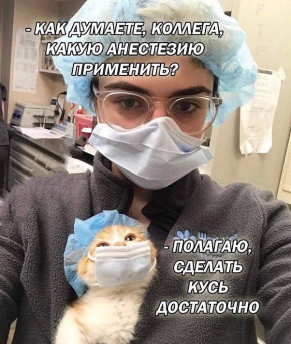 zabavnie_kartinki_zapilili.ru_100