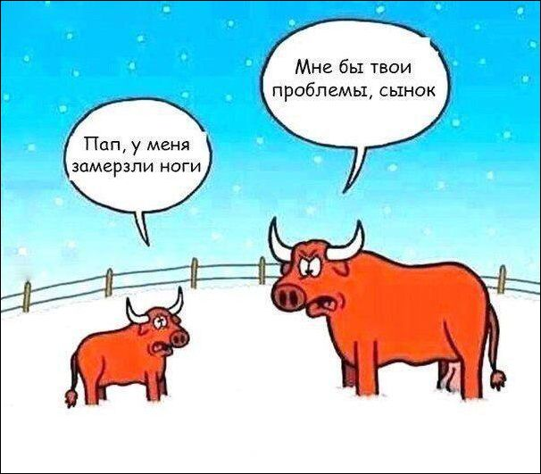 prikolnie_komiksi_zapilili.ru_20
