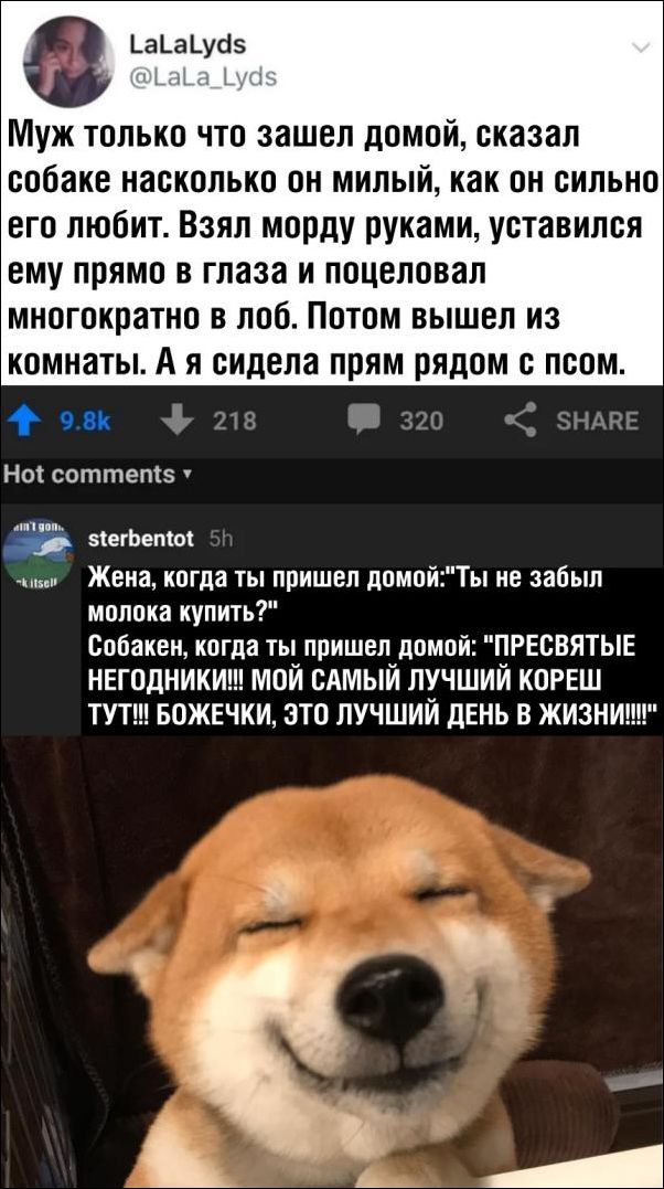 smeshnie_kommenti_zapilili.ru_113