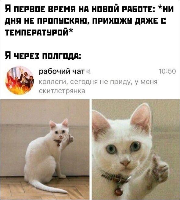 smeshnie_kommenti_zapilili.ru_78
