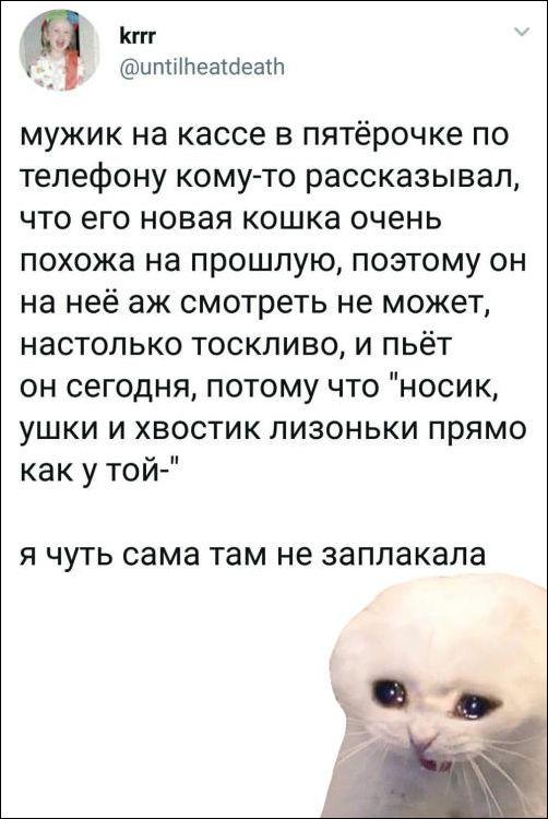 smeshnie_kommenti_zapilili.ru_81