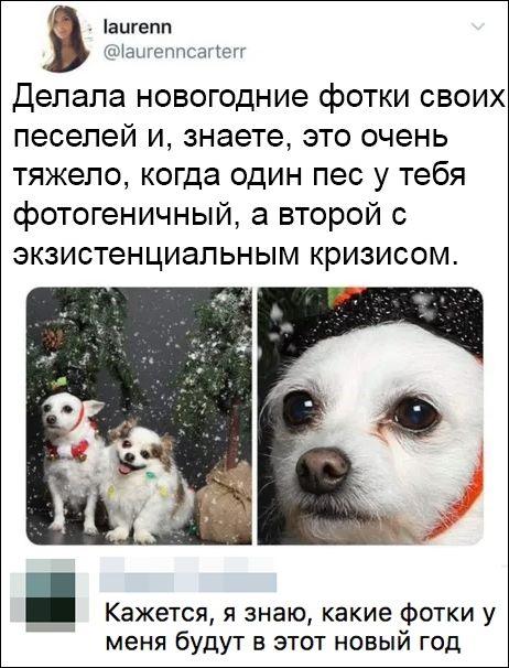 smeshnie_kommenti_zapilili.ru_90