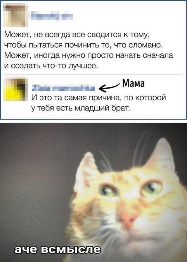 Смешные комментарии и переписки из социальных сетей (14 фото)